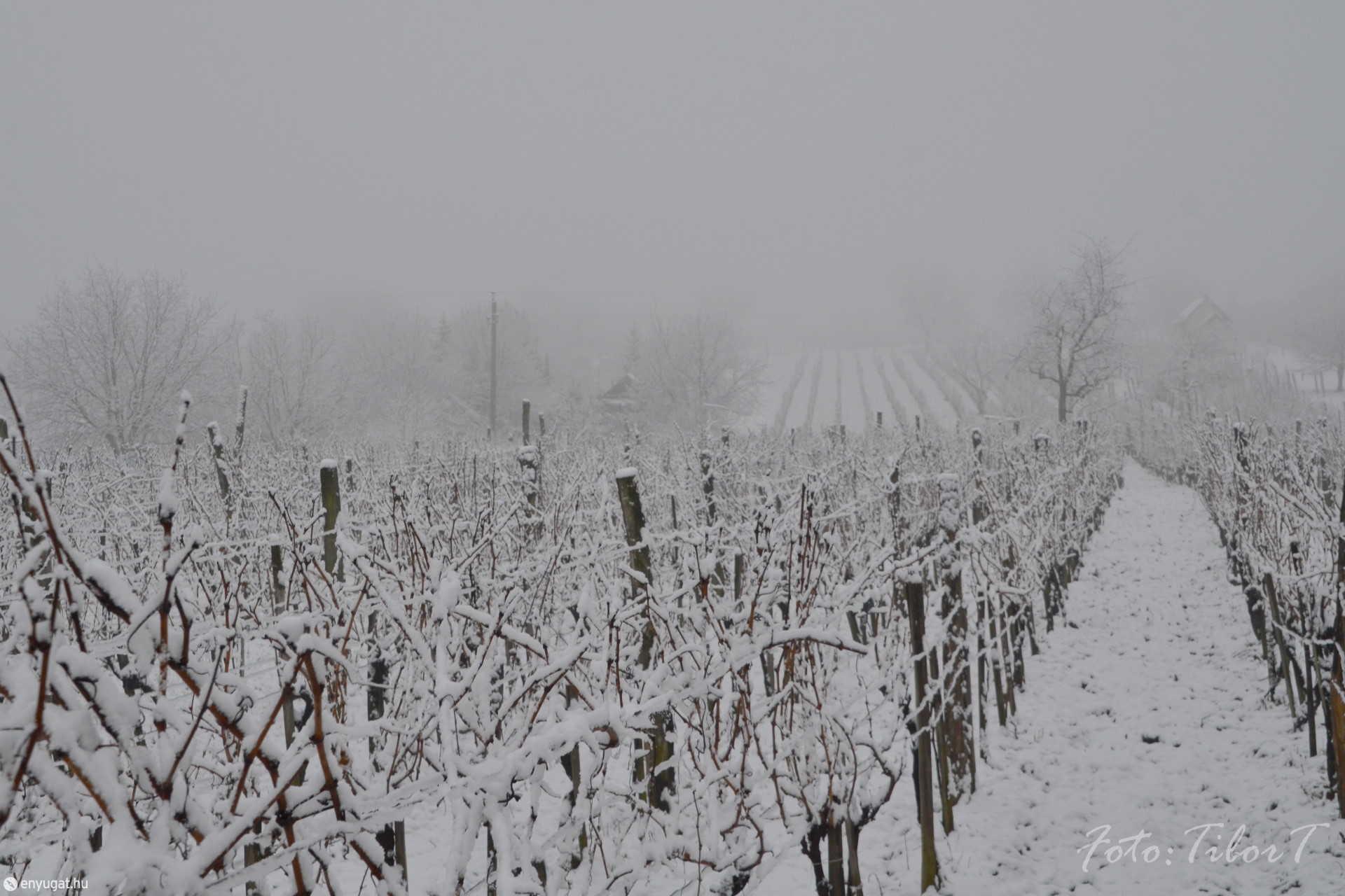 Megérkezett 2021 első hava Sopronba