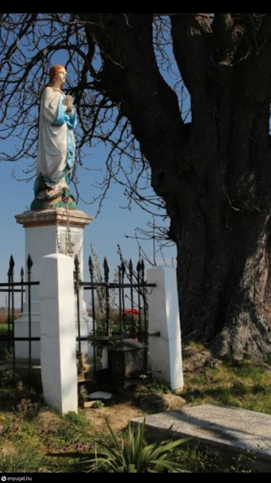 A szobor a vadgesztenyefával a felújítása előtt...