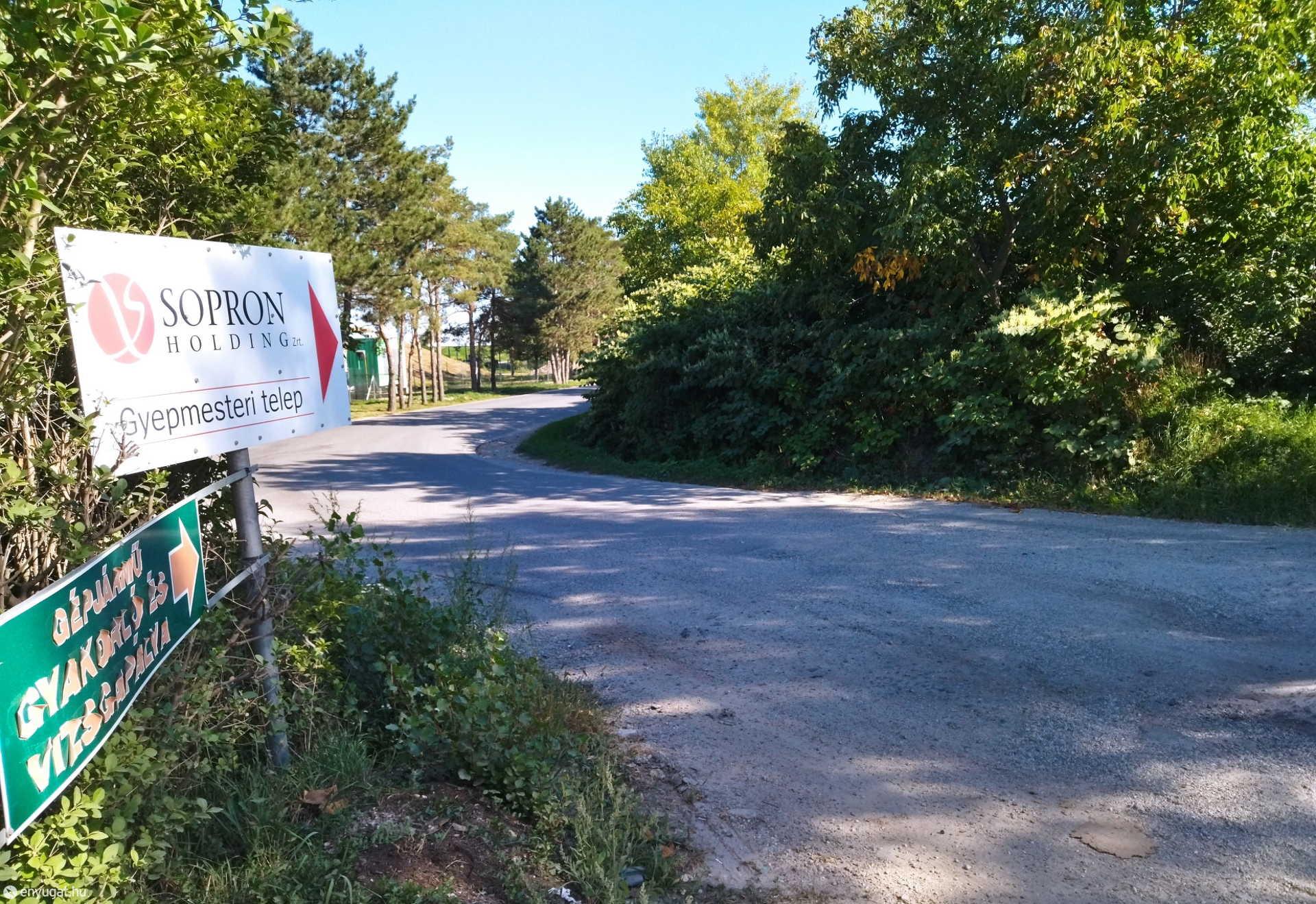 A zöldudvarra vezető úton sok soproni megfordul.