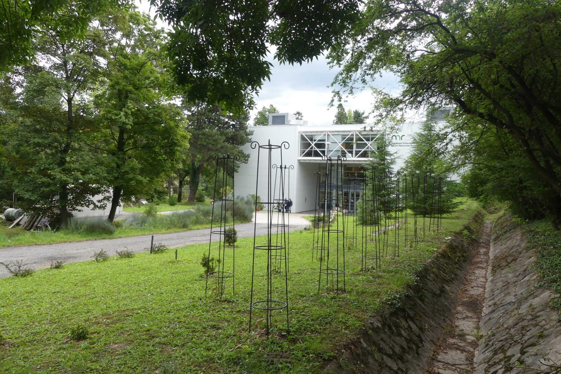 Fejlesztések a Soproni Egyetem bonatikus kertjében